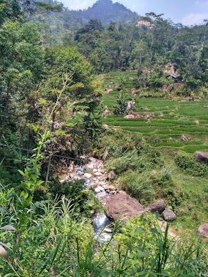 Hijau Tosca Curug Leuwihejo Desa Cibadak Bogor