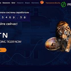 Start Trading Tiger Now: обзор и отзывы о tigertradenow.com (HYIP платит)