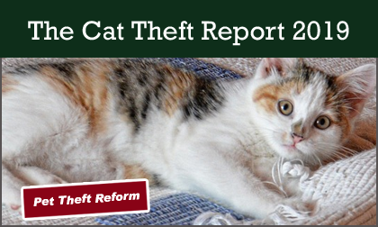 The Cat Theft Report 2019