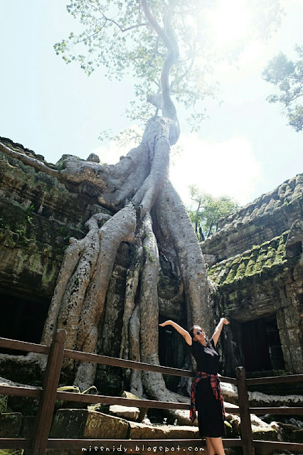 tomb raider filming location in cambodia