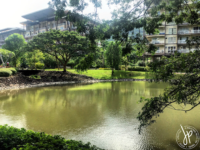 lagoon, lake, trees, residential building