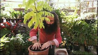 Gardening Australia ep.31 2016