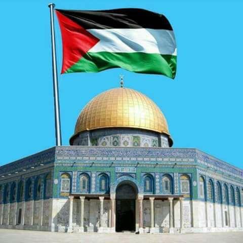 قصيدة رائعة على فلسطين