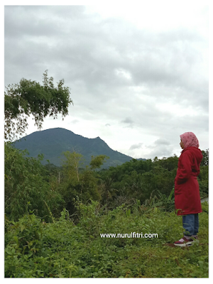 http://www.nurulfitri.com/2018/01/ketika-memutuskan-untuk-hijrah.html