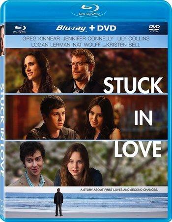 Stuck In Love (2012) Dual Audio Hindi 480p BluRay x264 300MB ESubs Movie Download
