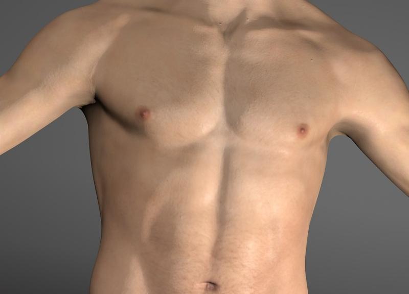 男性希望的胸型