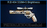 R.B454 SS8M+S Brightness