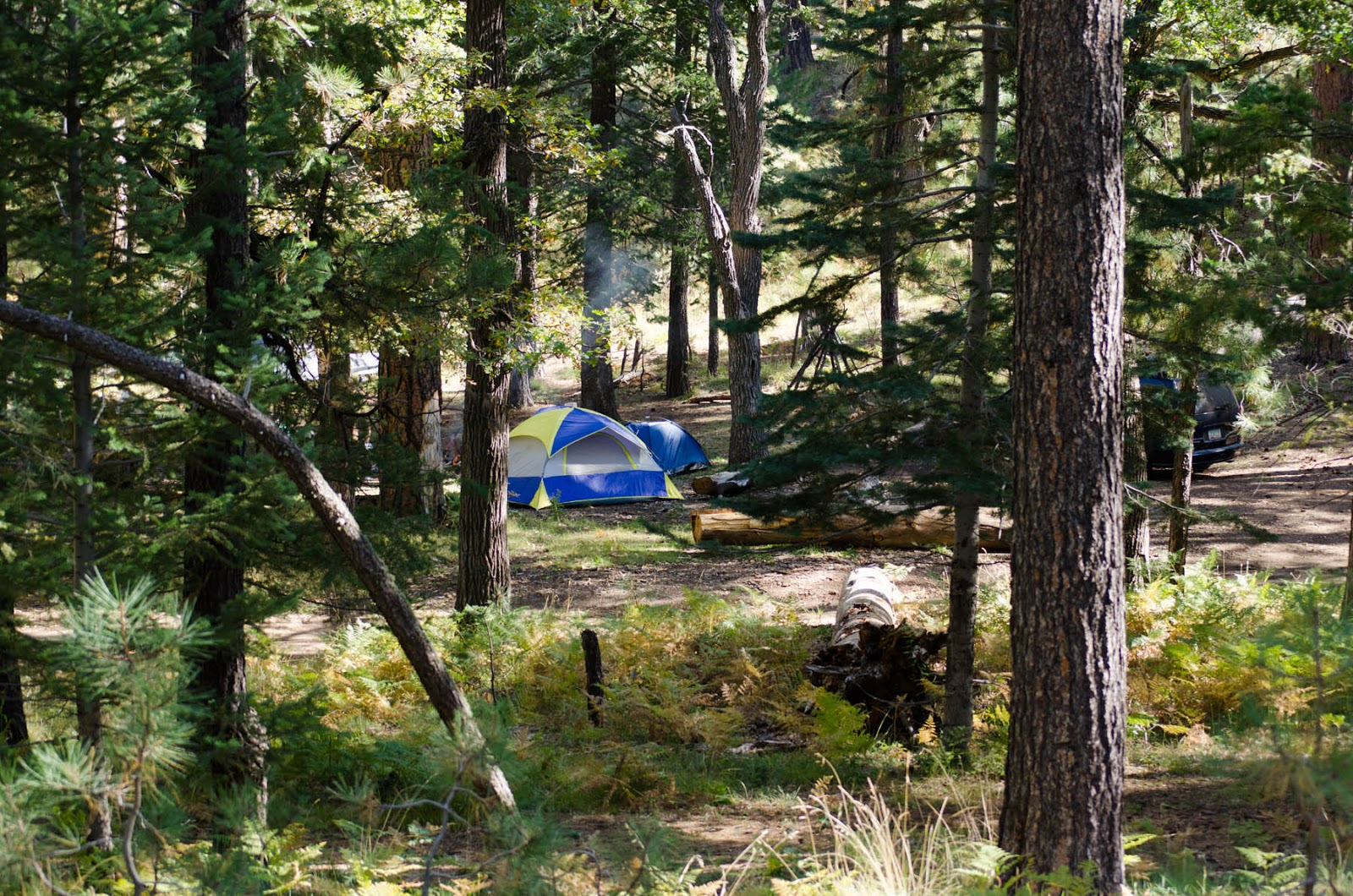Camping on the Mogollon Rim