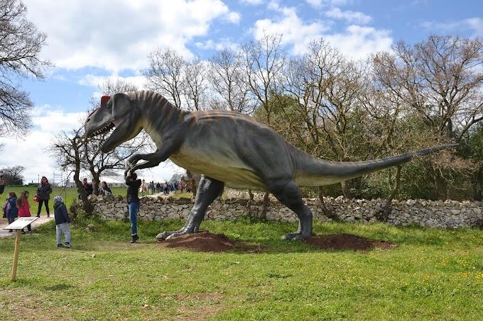 """20mila visitatori per la Mostra """"World of dinosaurs"""" a Cassano delle Murge"""