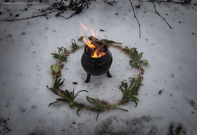 Blessed Imbolc Mandragoreae Victoria Francés Pagan Sabbath Imbolc Ritual Oimelc Candlemas