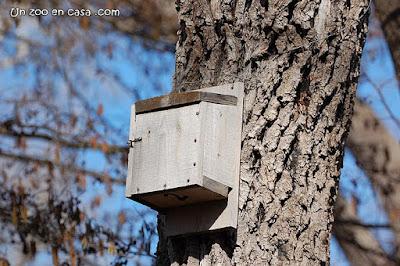 Caja nido para murciélagos en la Reserva de Sebes
