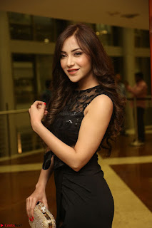 Angela Krislinzki in Transparent Black Gown at Rogue Movie Teaser Launch 1st March 2017 090.JPG