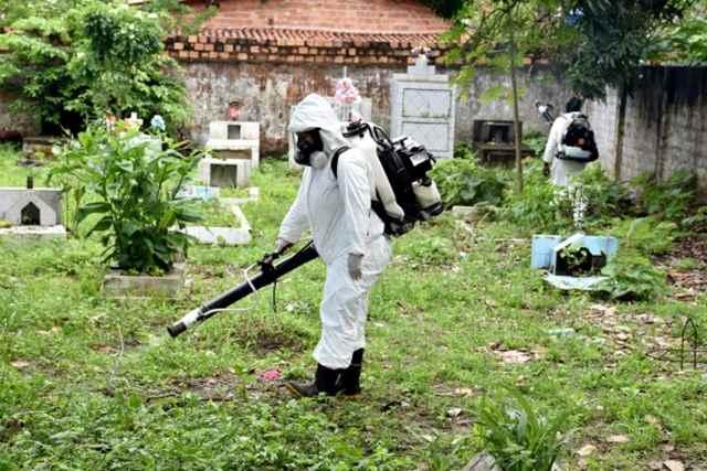 Agentes caçam mosquito em São Luís