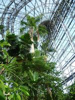 Yume no shima Tropical Greenhouse Dome