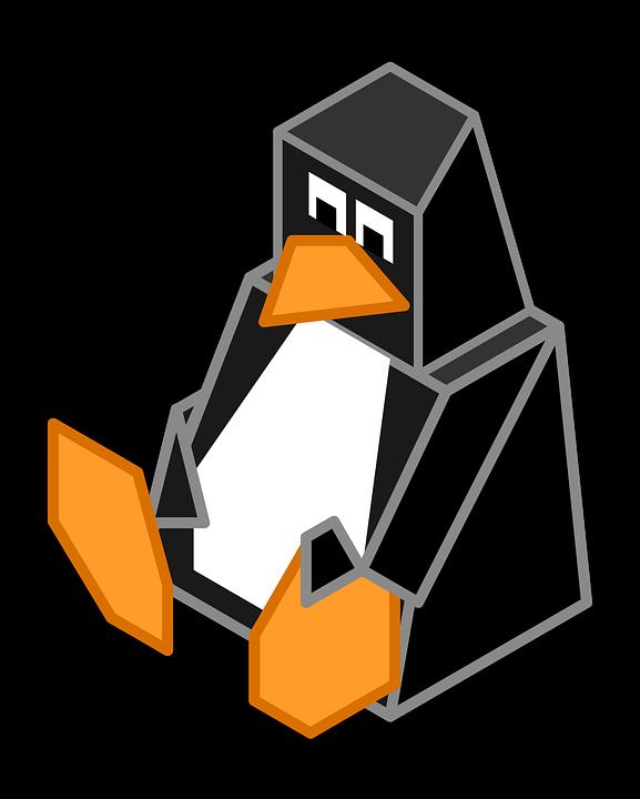 Fallo permite tomar el control un sistema Linux manteniendo presionada la tecla Enter