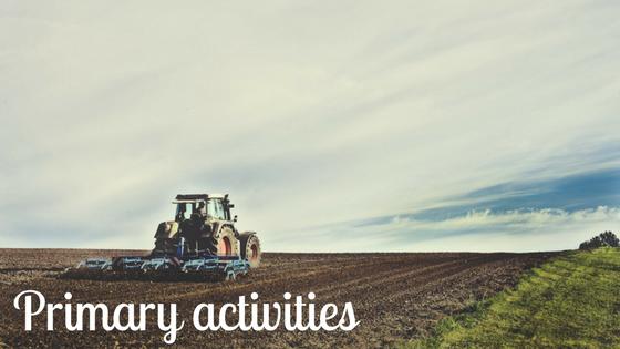 primary economic activities