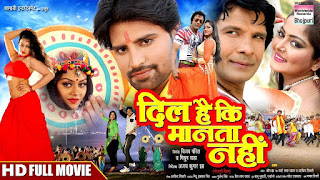 Dil Hai Ki Manta Nahi Film