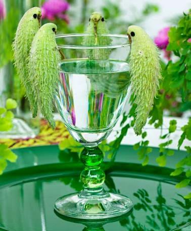 Floarea fluturilor