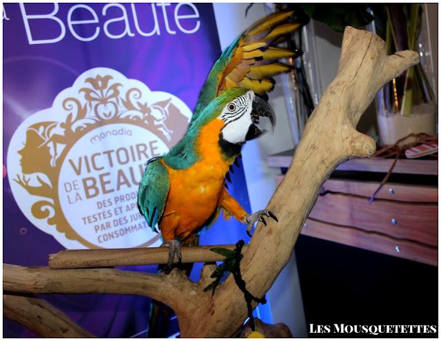 Atelier Beauté Les Victoires de la Beauté - Les Mousquetettes©