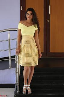 Shipra gaur in V Neck short Yellow Dress ~  034.JPG