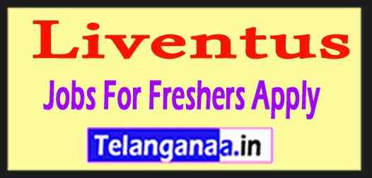 Liventus Recruitment Jobs For Freshers Apply