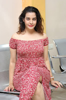 Diksha Panth Latest Photos at Maya Mall Pre-release Event TollywoodBlog