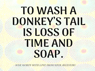 Fools Quotes and Sayings
