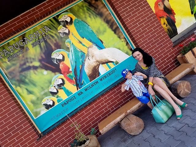 Papugarnia Kubuś & Endriu - Oborniki Śląskie - podróże z dzieckiem - atrakcje dla dzieci na Dolnym Śląsku