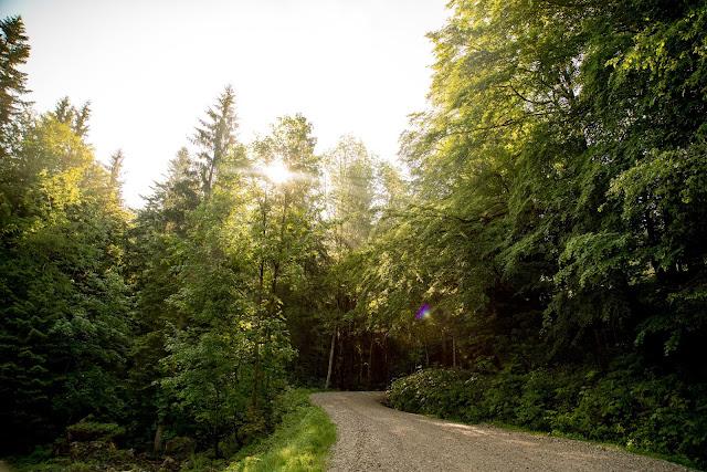 Von Hintersee aufs Gennerhorn  Wandern Fuschlseeregion  Osterhorngruppe 02