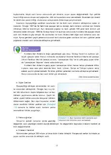 11. Sınıf Coğrafya Ders Kitabı Cevapları Gün Yayınları Sayfa 17