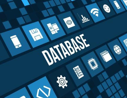 Apa Itu Server & Database