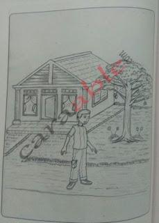 Contoh gambar rumah, pohon dan orang. human tree person test dan kunci jawaban + pembahasan soal psikotes