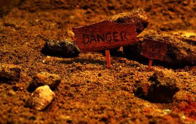 Risk and Danger