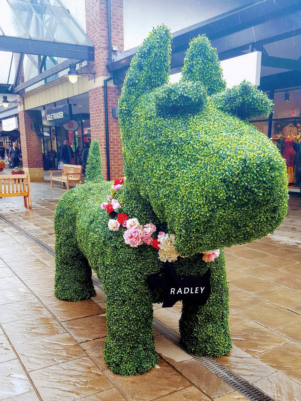 Big Radley Dog: Welcome To The Weekend Blog Hop…