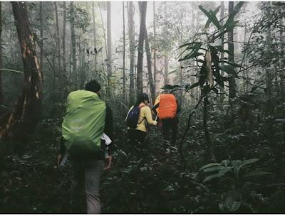 jalur-pendakian-bukit-raya-2278-mdpl