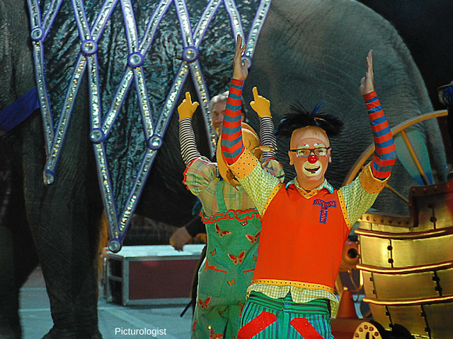 Clown at Ringling Bros and Barnum and Bailey Circus Xtreme photo by K., Johnson, Picturologist