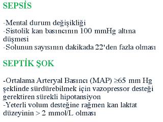 sepsis, septik şok,  qSOFA, SCCM, sepsis tanım