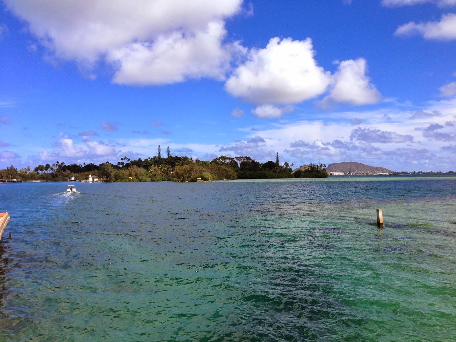 Gilligans Island Kaneohe