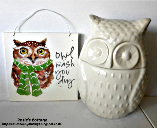 Beautiful owl accessories