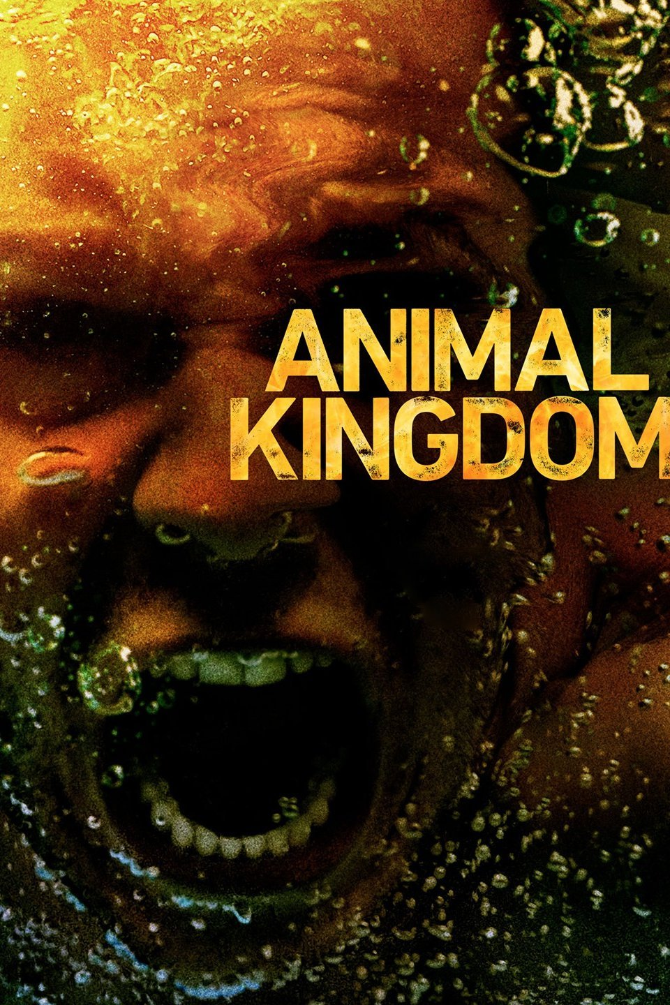 Animal Kingdom Season3 EP1 – EP8 ซับไทย