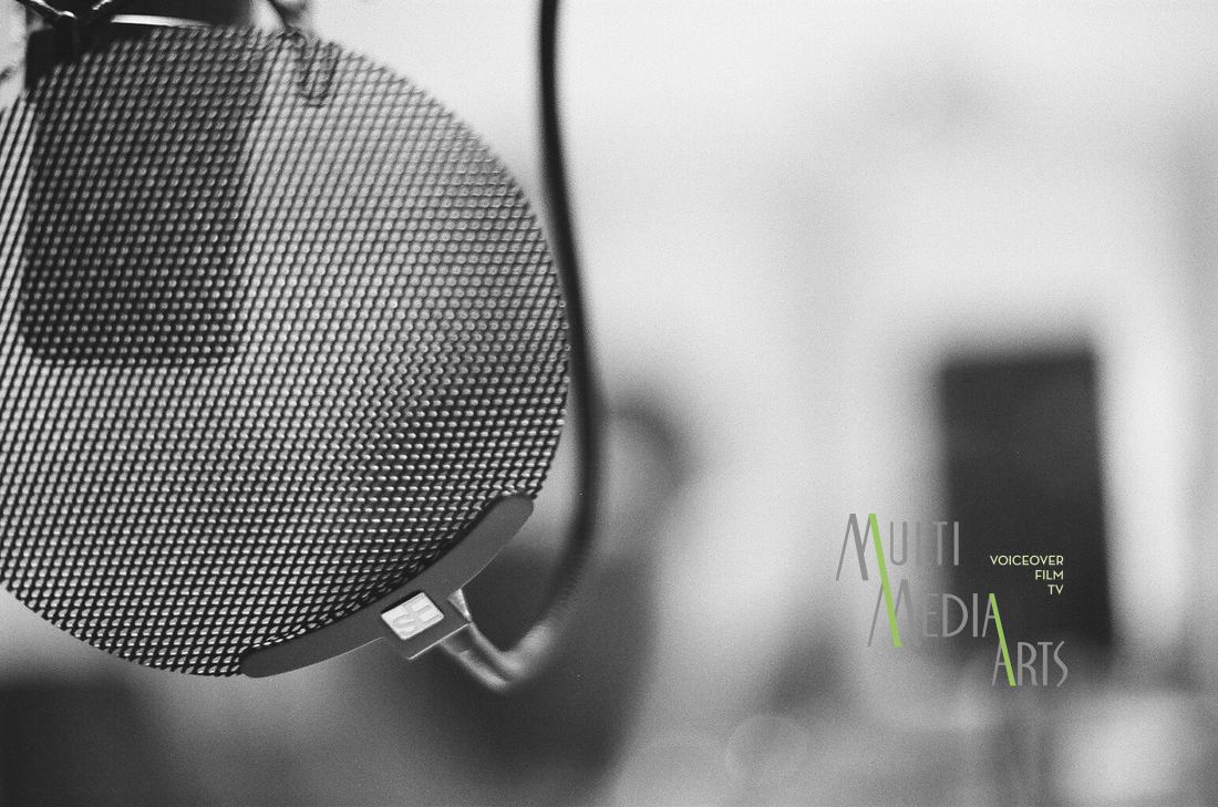 San Diego MultiMedia Arts Voice Acting School