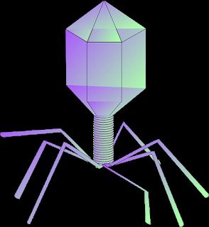 Бактериофаг Вирус древний