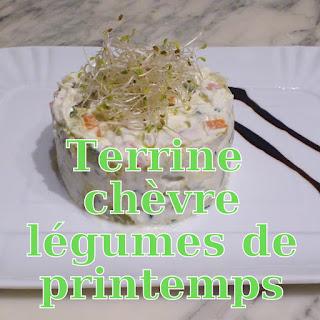 http://danslacuisinedhilary.blogspot.fr/2012/05/terrine-de-chevre-frais-aux-legumes-de.html