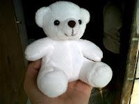 Boneka Bear, Beruang
