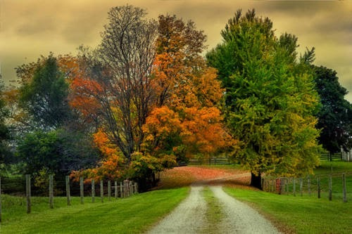Pretty Fall Desktop Wallpaper Country Road In Fall Content In A Cottage
