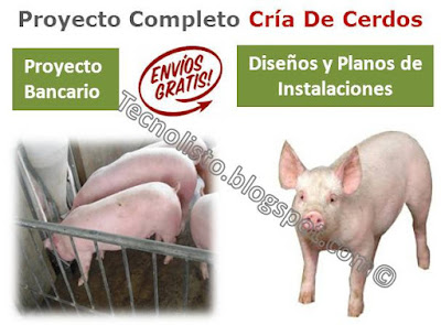 """""""Cría y engorde de cerdos y lechones"""""""