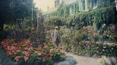 Nenúfares en tiempos de guerra: cómo Monet creó su jardín en Giverny