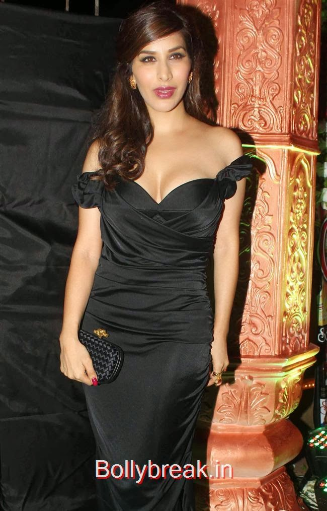 Sophie Choudhary, Hot Babes at Society Young Achievers Awards 2013