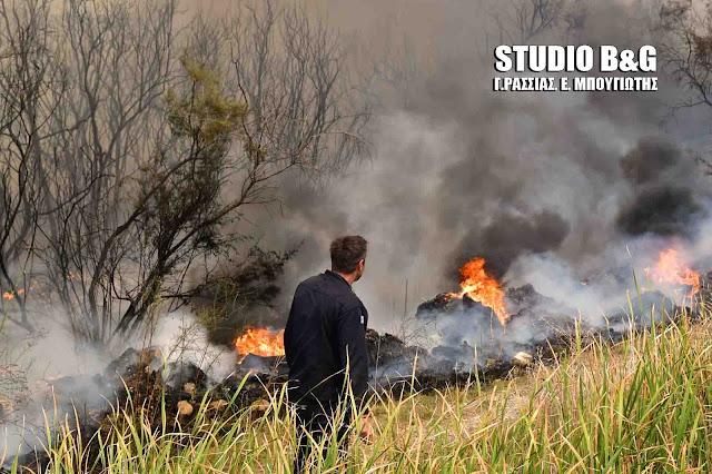 90 αγροτοδασικές πυρκαγιές σε όλη την Ελλάδα - Υψηλός ο κινδυνος και για την Αργολίδα