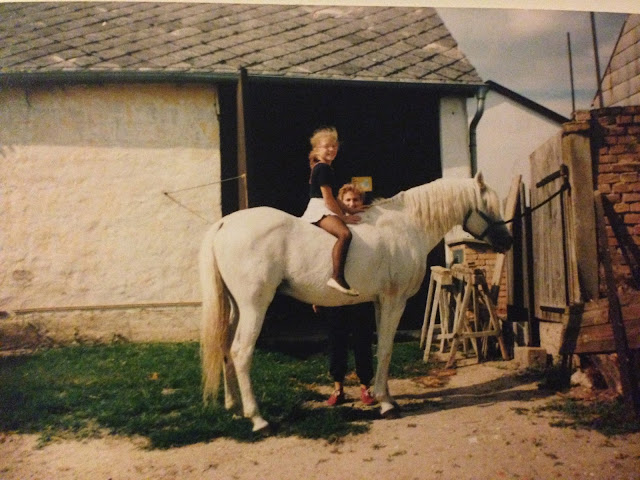 A Beginner's Guide To Horse Riding